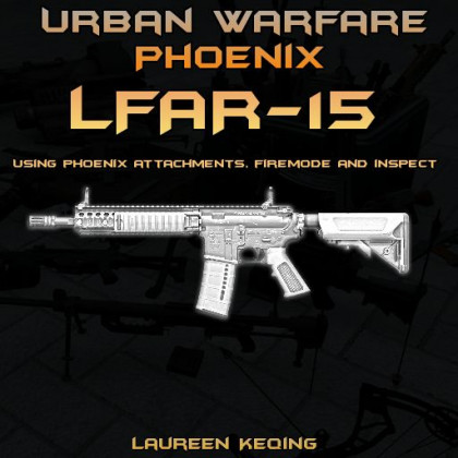 LFAR-15 | Urban Warfare Phoenix