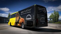 Man Lion's Coach 2017 Optiview 1